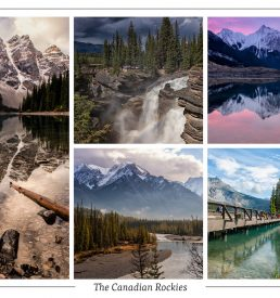 Collage (Moraine Lake Serenity) Postcard